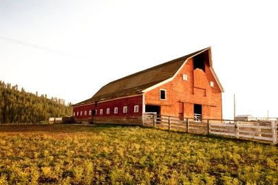 Wittman Barn